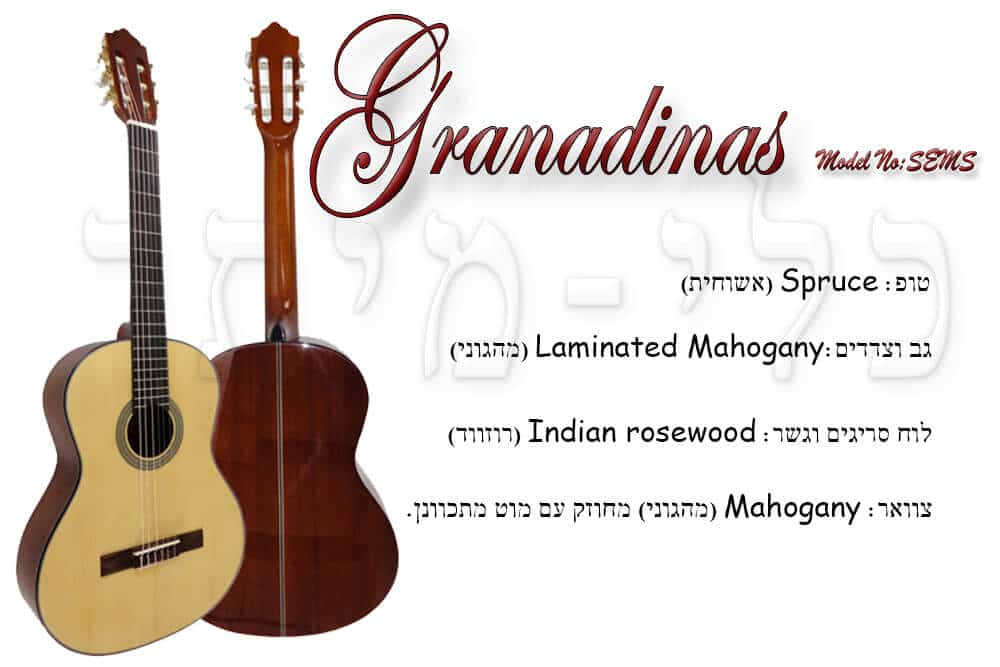 גיטרה קלאסית ספרדית-Granadinas Sesm - מבנה של הגיטרה