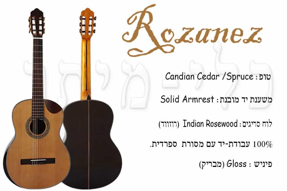 גיטרה קלאסית מוגברת Rozanez ELPE02-AC - תפריט חלקי הגיטרה