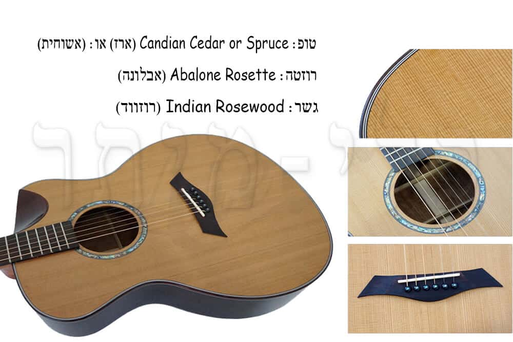גיטרה אקוסטית מוגברת Virginia ELMSE02-AC - טופ רוזטה וגשר