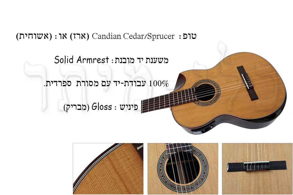 גיטרה קלאסית מוגברת Rozanez ELPE02-AC -מבנה הגיטרה
