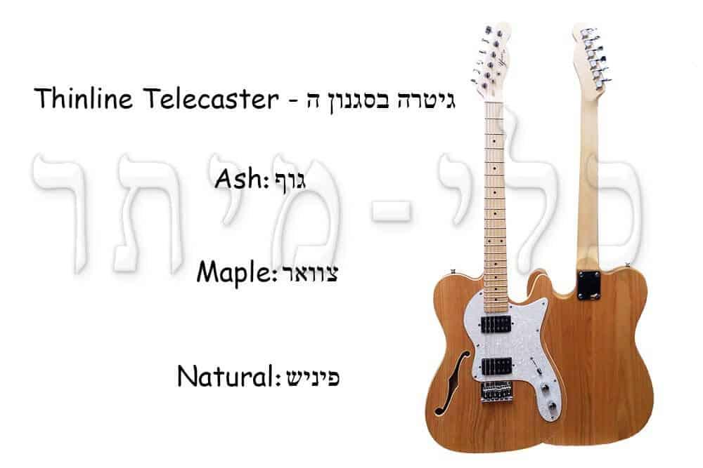 גיטרה חשמלית - Thinline Telecaster - מבנה הגיטרה