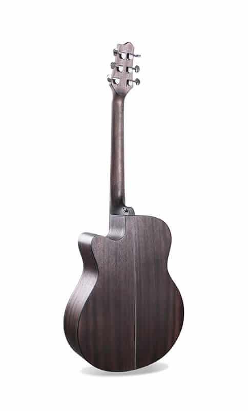 גב הגיטרה וצוואר
