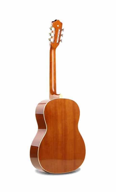צד אחורי של הגיטרה