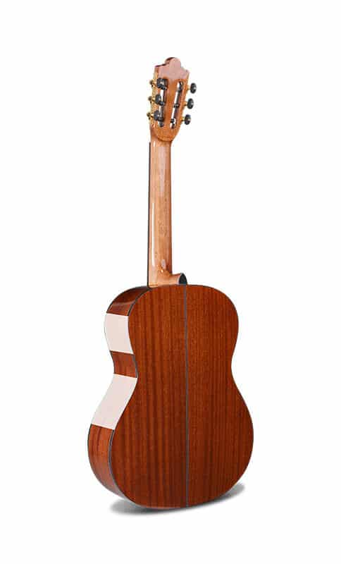 גיטרה קלאסית - Rozanez AC-118- גב וצוואר
