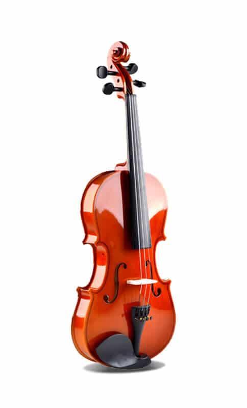 כינור 4/4 Smiger - V30 MA - חלק קדמי עץ אשוחית - Spruce