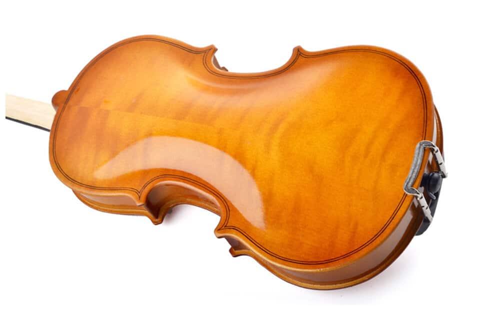 גב וצדדים של גוף הכינור בנוי מ Spruce