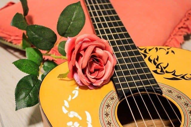 גיטרה מחיר - גיטרה קלאסית לצעדים ראשונים