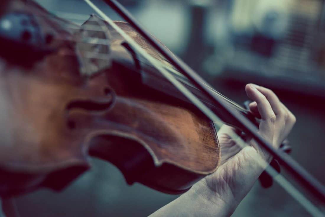 כינור למתחילים - מדריך לבחירה