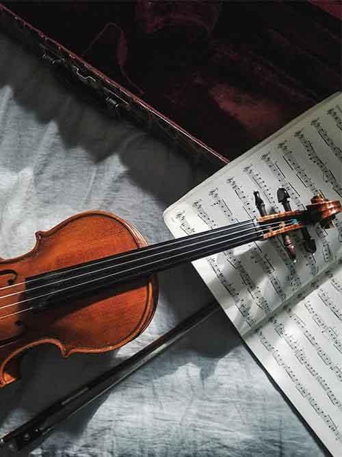 כינורות- מחלקה