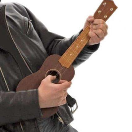 גיטרה קטנה